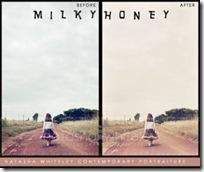 milkyhoney-300x244